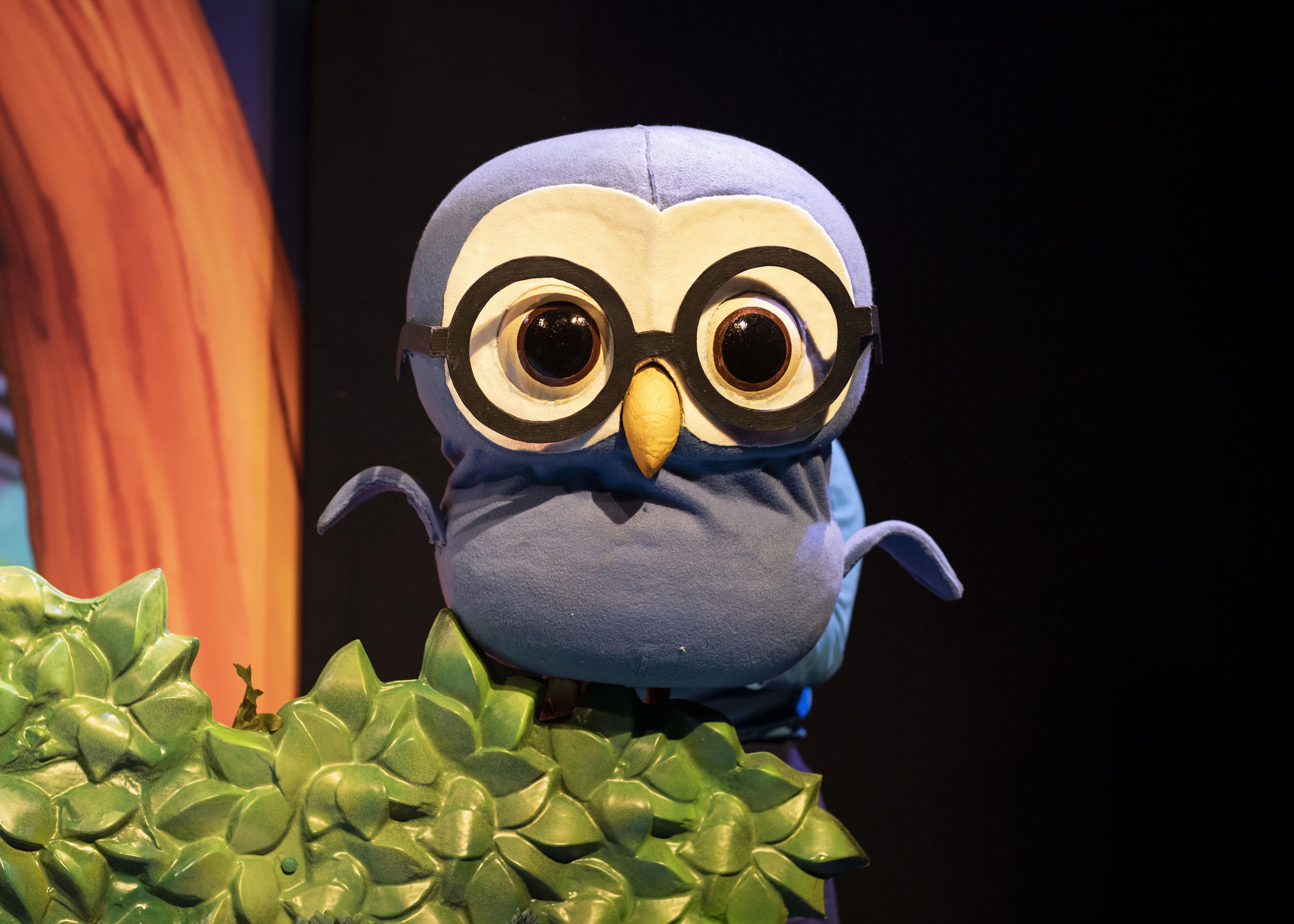 5. LITTLE BABY BUM LIVE. Wise Old Owl. Photo Helen Maybanks.jpg