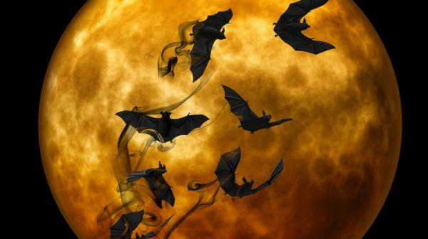 An illustration of Bats against the moon